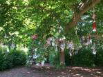 Drzewo smoczkowe 1